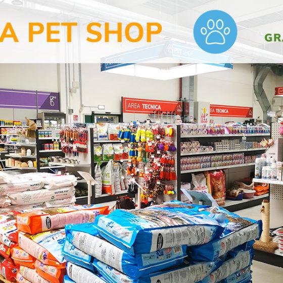 pet shop animali da compagnia